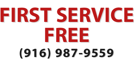 Get Your First Service Free of our Roseville pest control services