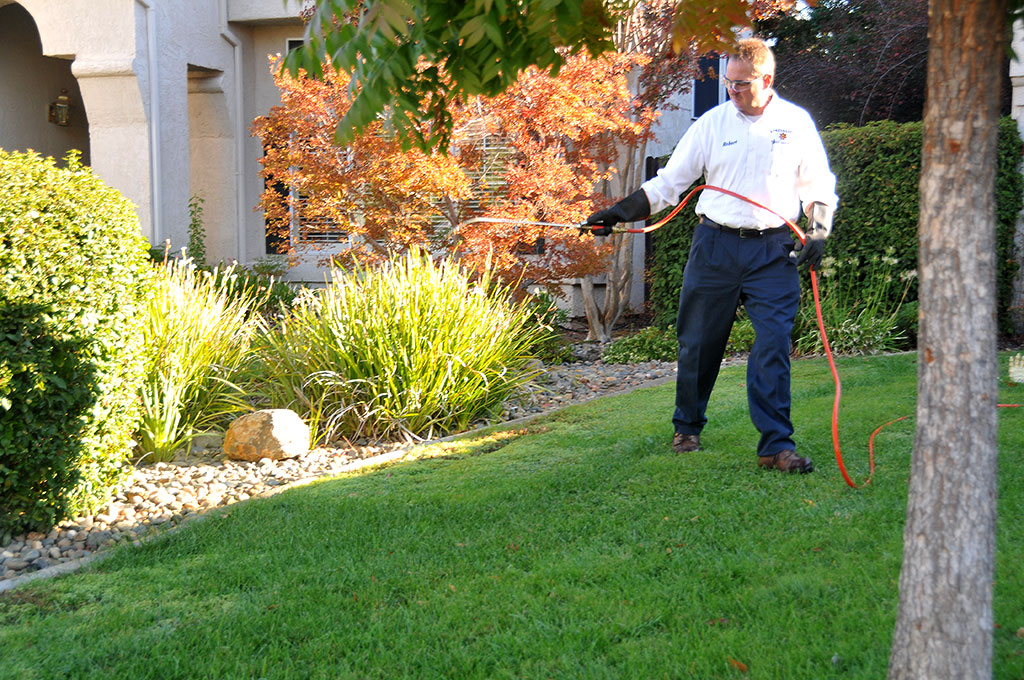 A Specialized Pest Patrol Pest Control Technician servicing a customer in Roseville