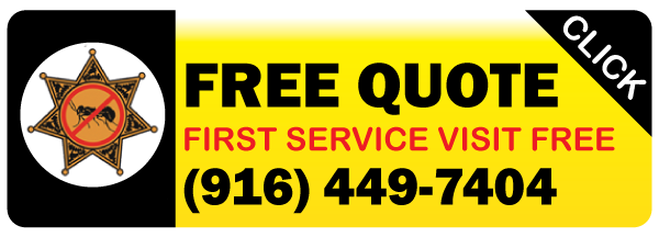 Contact Specialized Pest Patrol who provides first service visit free and free quotes
